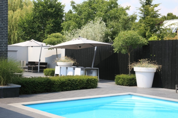 modern zwembad zwembad pinterest modern tuin and jacuzzi