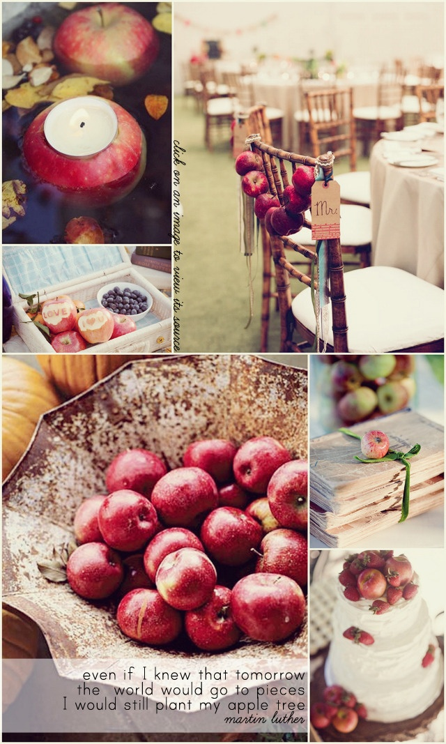 43 best apple of my eye theme images on pinterest apples i hate pinning stupid wedding things so ill just have to do apple decorationsautumn junglespirit Image collections