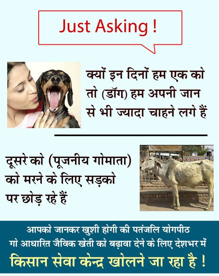 गौ रक्षा ; bharat swabhiman trust; cow protection.