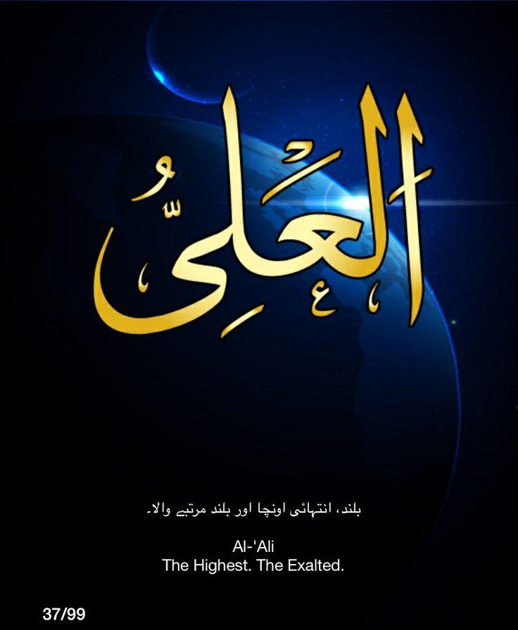 DesertRose,,, Allah                                                                                                                                                      More