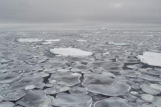 Beauty North!  #ice #ice_floe #Arctic #glory #freelancecreative #freelancediscount #freelancer