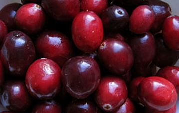 Organic Supplements from Cranberries http://freshsupplements.com/organic-supplements.htm