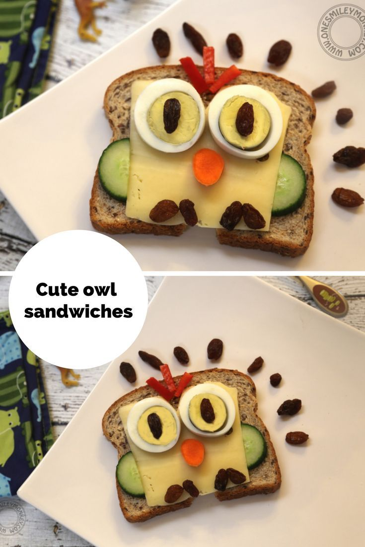 cute owl sandwiches for kids