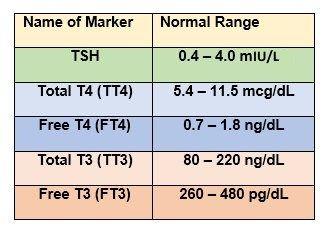 Tsh levels chart thyroid pinterest thyroid