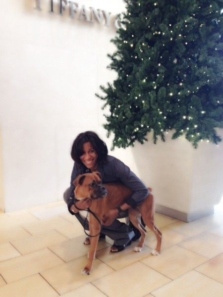 CHRISTMAS WISH: After years of longing for a boxer puppy, I found this 10-month old boxer at the SPCA adoptions at Neiman Marcus this week. ...