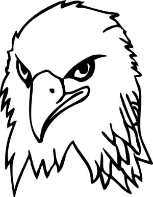 eagle head coloring page - 14 best images about eagle art on pinterest how to draw