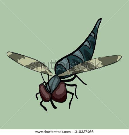#cartoon #vector #robberfly http://qps.ru/pVmE7