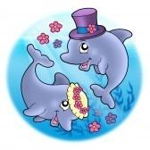 Similar:9443067 : Imagen de bodas con delfines en el mar - ilustración en color.
