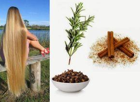 Shampoo Caseiro de Alecrim com Canela e Cravo: Combate a Queda de Cabelo e Estimula o Crescimento dos fios