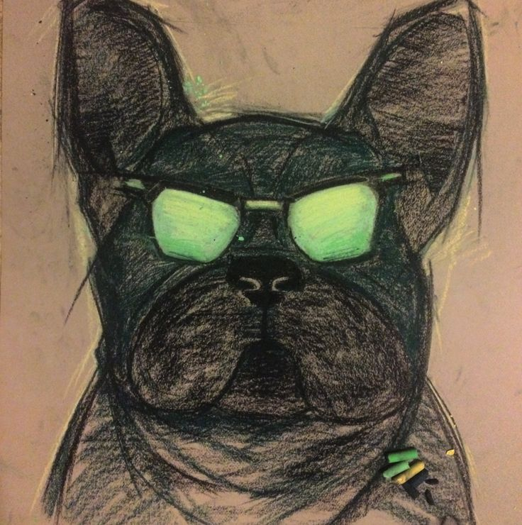 French bulldog #French_bulldog#french#bulldog#black#draw#sketch