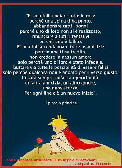 Il piccolo principe #ilpiccoloprincipe #rose #spine #amore #amicizia #fine #inizio #opportunita