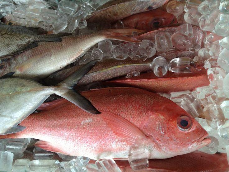 Такую свежайшую рыбку можно отведать в ресторанчике прямо на берегу океана