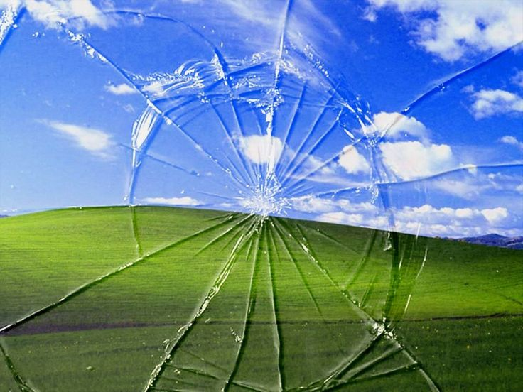 Funny Bliss Windows Wallpaper | 1600x1200 | ID:14716