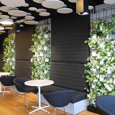 16 best images about green office wall on pinterest for Green office interior design