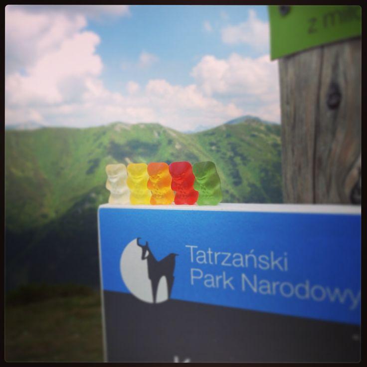 Haribo Bears in TPN