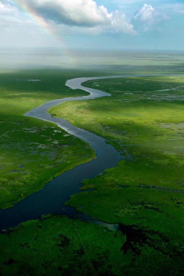 Mary River - Northern Territory - Australia...crocodile area #AustraliaItsBig