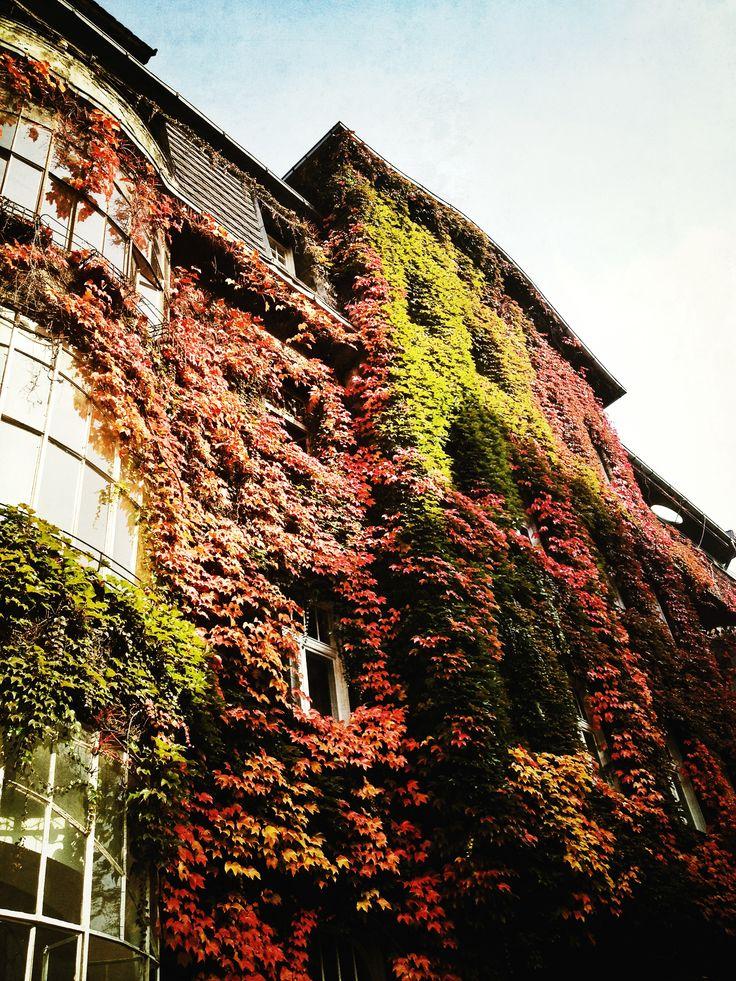 Katowice, ul. Wojewódzka 50, Dom Ferdmanna #kamienica #townhouse #katowice #silesia #śląsk
