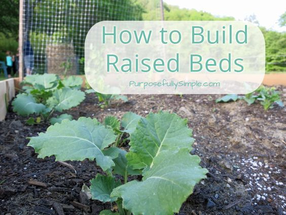 How to Build Raised Beds Cheap and Quick