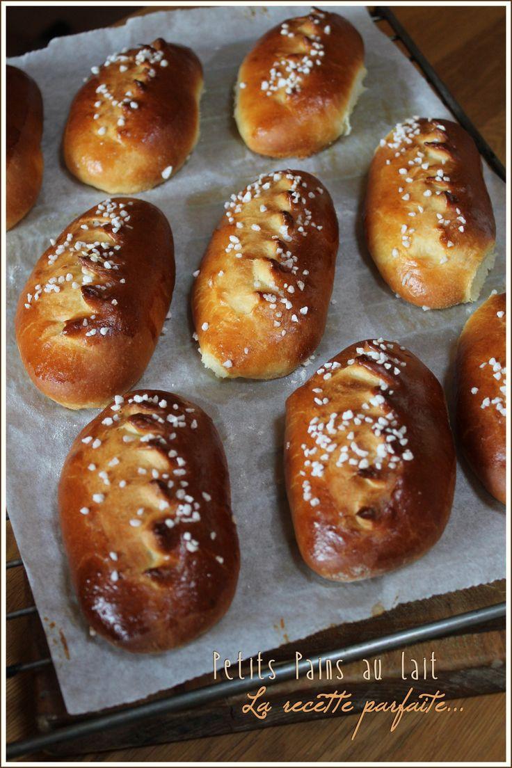 """Petits pains au lait, la recette parfaite de Macaronette - """"Mes brouillons de cuisine !"""""""
