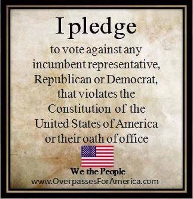 I pledge to vote against any incumbent representative, Republican or Democrat, that violates the Constitution of the United States of America or their oath of office.