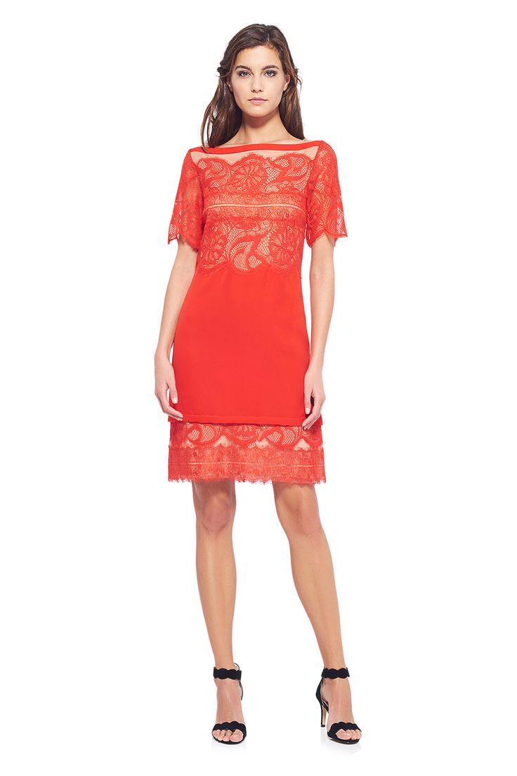 AWI17170S Sukienka koktajlowa #runway #dress #fashion #tadashishoji
