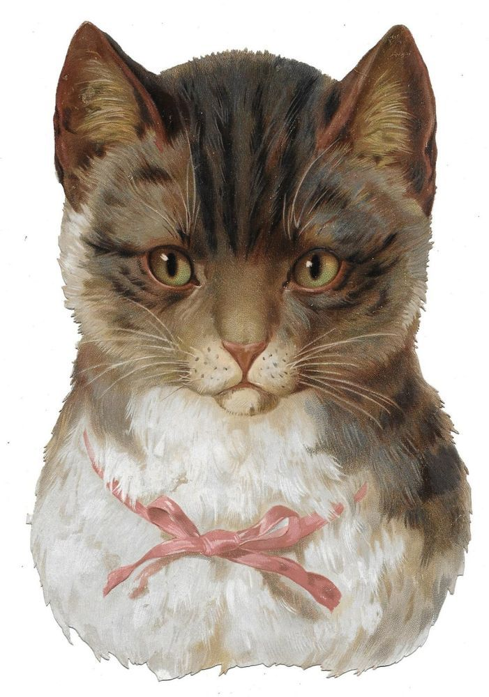 Victorian Die Cut Scrap Beautiful Large Cat ca. 1880s-90s:
