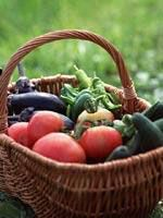 Tips to prepare your soil for a new vegetable garden area.