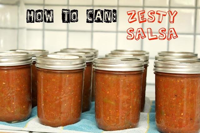 Can: Zesty Salsa
