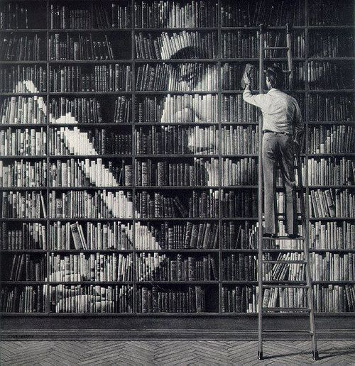 justlookandbeamazed, the artist in me wants to do this. On my shelves it would not be so grand, nevertheless it would be so cool!