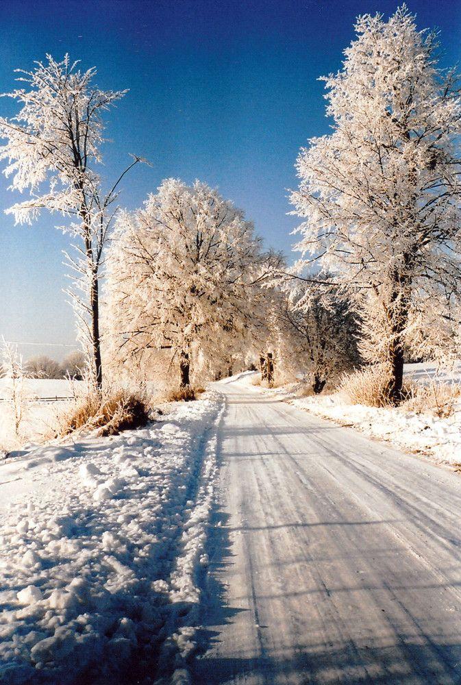 Winter in Masuren
