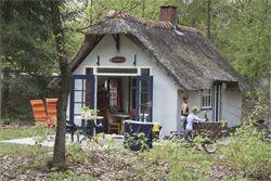 Grolloo- Hans en Grietje huisjes op Landgoed de Beren Kuil- uitgeroepen tot beste kinder camping van Europa 2012 (Anwb)