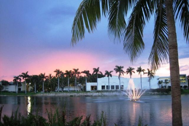Learn About the University of Miami and What It Takes to Get In: University of Miami
