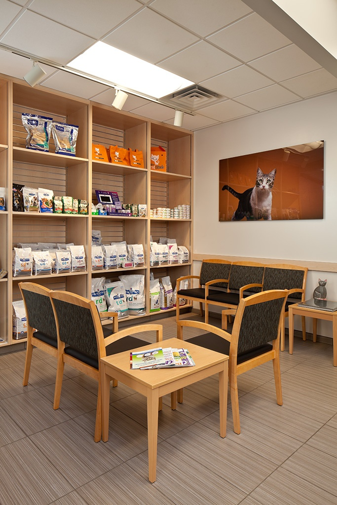 Cat Waiting Area At The Newly Opened VCA Central Kitsap In Silverdale WA