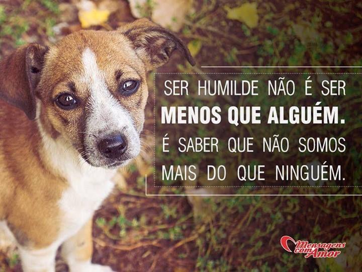 Ser humilde não é ser menos que alguém. É saber que não somos mais do que ninguém. #humilde
