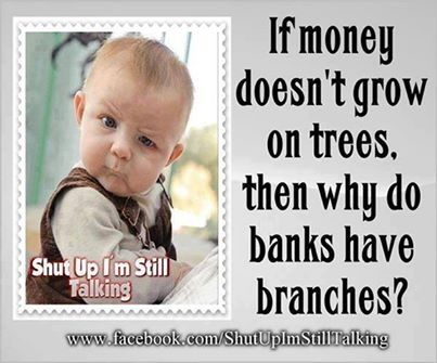 If money doesn't grow on trees f