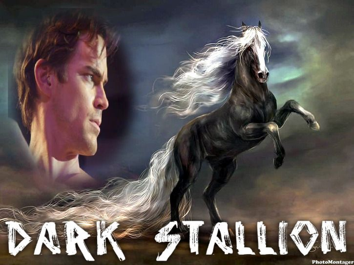 This is a photo I had made not so long ago it shows you he is definitely my dark stallion