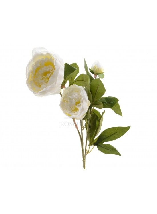 Silk Peony Rose Branch @ rosefields.co.uk chic_boutique_homeware £9.99