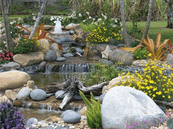 74 best images about ponds on pinterest for Garden pond specialists