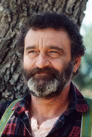 Image result for victor french little house