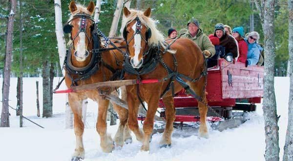 Moyen de transport plutôt romantique et bucolique au parc provincial Mactaquac. | La faune au Nouveau-Brunswick, au Canada #ExploreNB