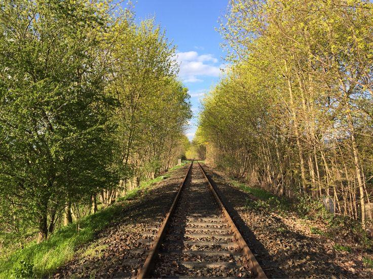 Der Frühling ist da! Ein Grund mehr für einen Ausflug ins Grüne.   #erlebnisbahn #Draisinefahren #allaroundberlin