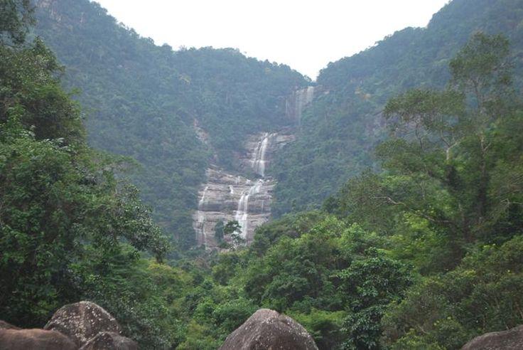 Thiên nhiên phong phú rừng Khe Rỗ