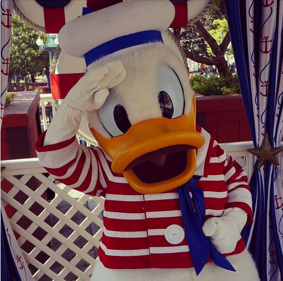 Stargazing Wishes In Anaheim Ca: 25 Best Images About Donald Duck On Pinterest