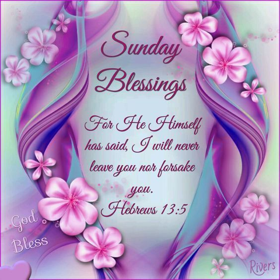 Sunday Blessings. Thank you sweet Pamela. Ly