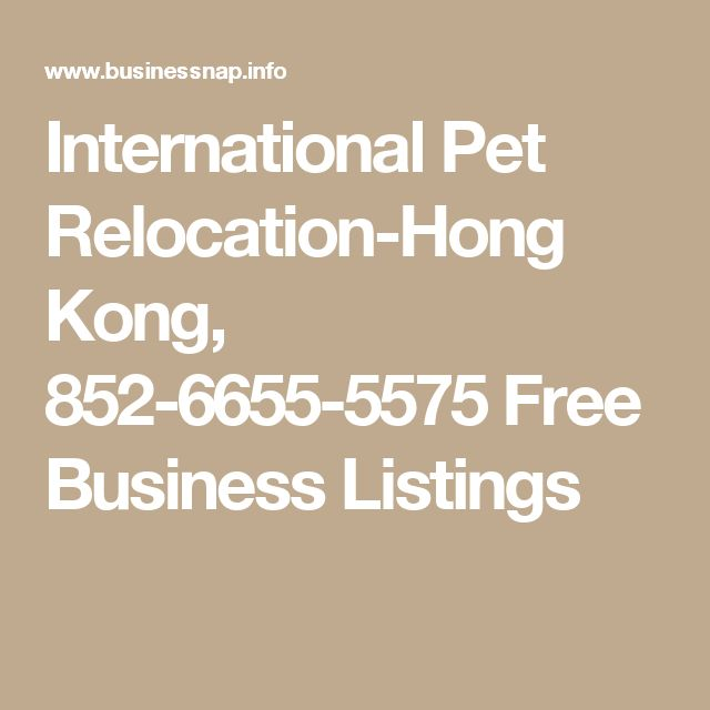 International Pet Relocation-Hong Kong, 852-6655-5575 Free Business Listings