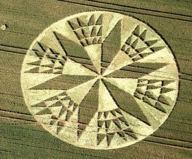 154 Best Rop Ircles Images On Pinterest Crop Circles Aliens