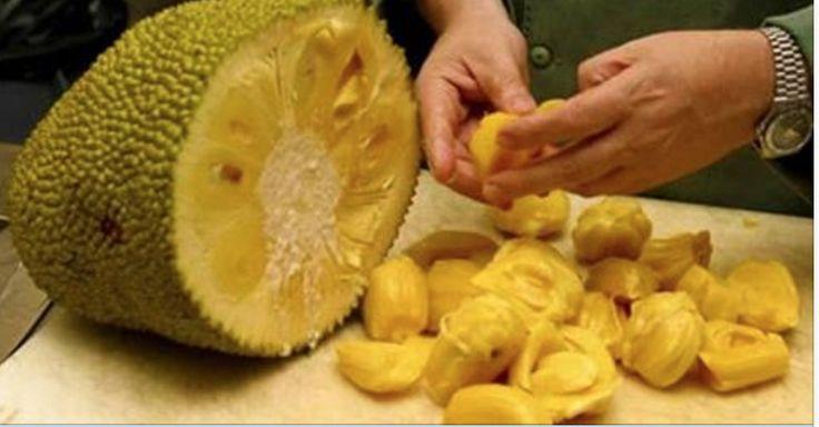 Cientistas revelam mais uma potente fruta anticâncer - a jaca! | Cura pela Natureza