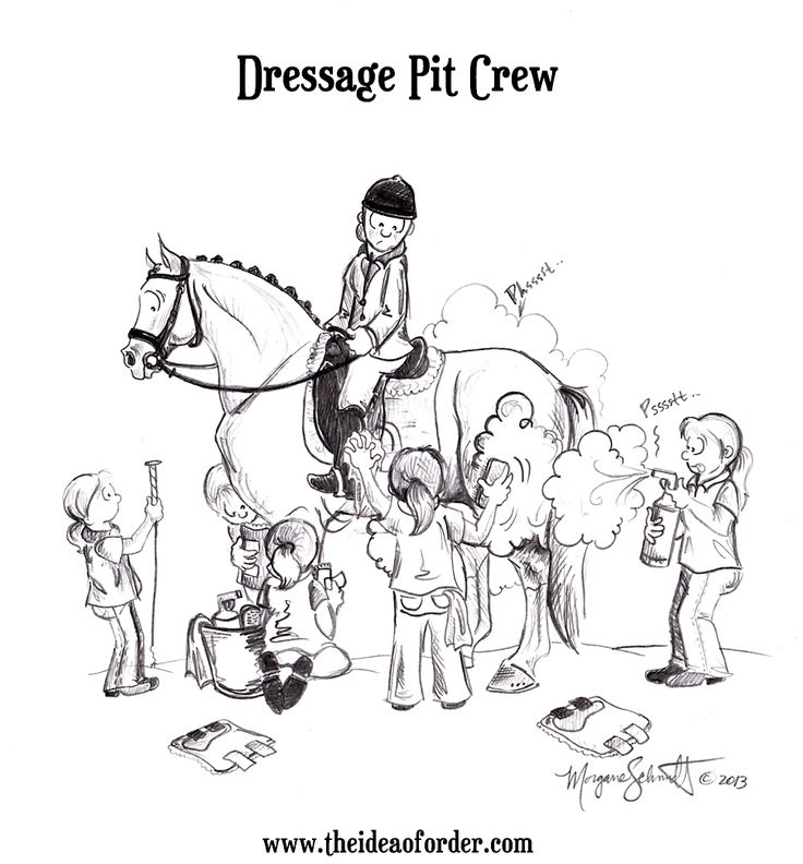 Dressage pit crew Horse humour Pinterest