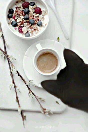 Jó reggelt! :) #morning #saturday #weekend #coffee #cat #breakfast