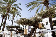 http://www.vogue.fr/lifestyle/voyages/diaporama/105-by-la-cantine-hotel-ibiza-espagne/35767